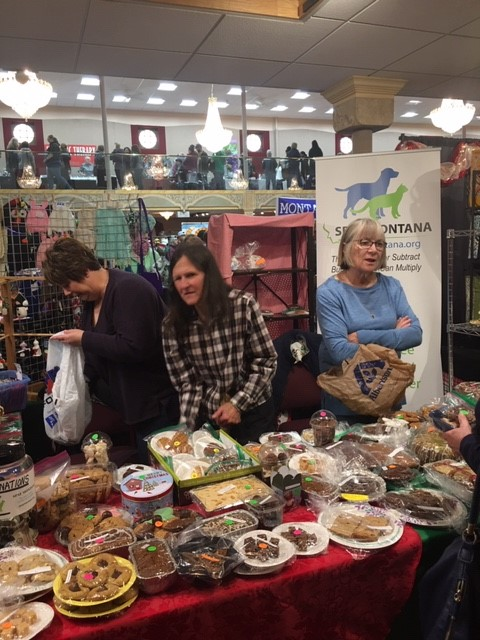 The Helena Christmas Craft Fair